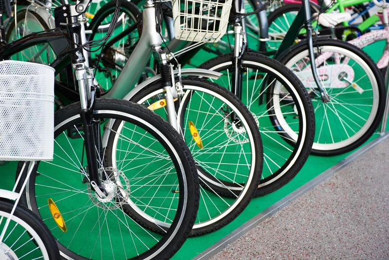 Met een elektrische fiets het bos in